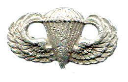 Silver Paratrooper's Pin